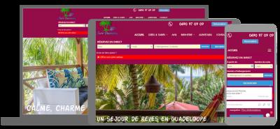 Lilot palmiers
